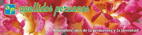 Logo setiembre 2009