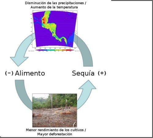 El ciclo de sequía