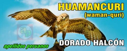DORADO HALCON