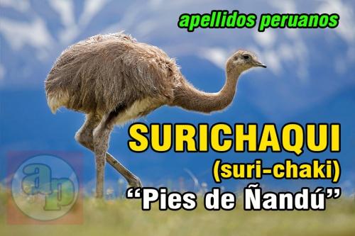 SURICHAQUI